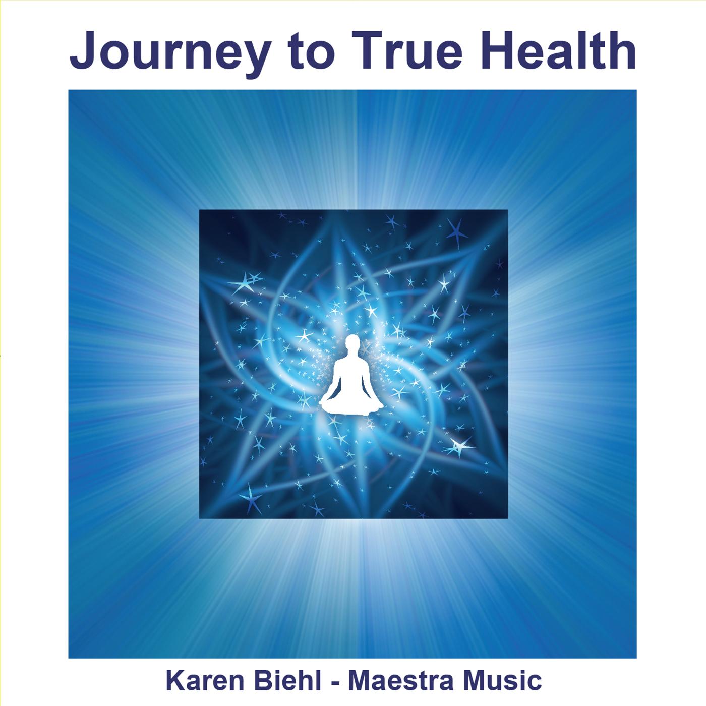 Journey to True Health (cd)