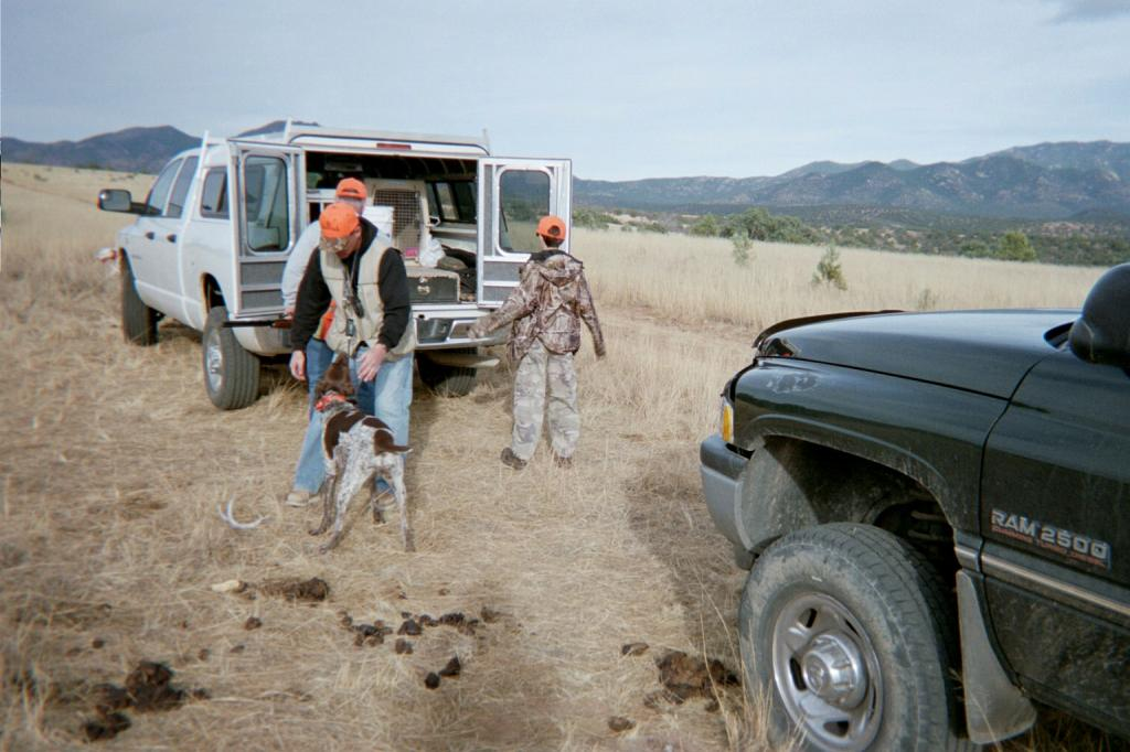 Arizona Quail Hunt