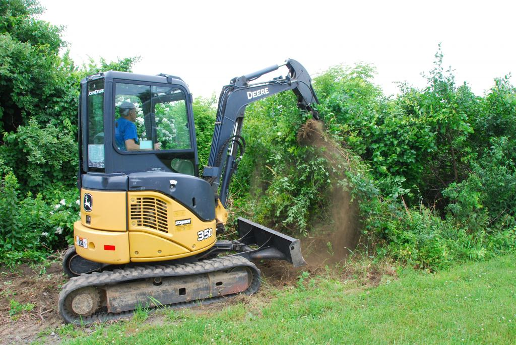 Phil's Excavating removes brush
