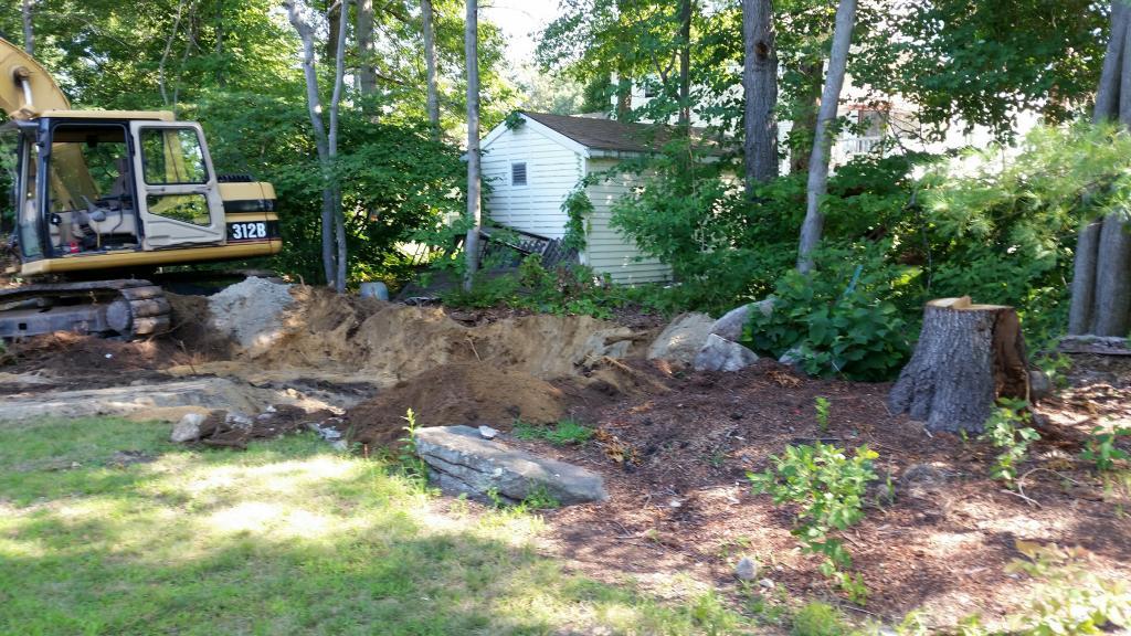 stumps in yard