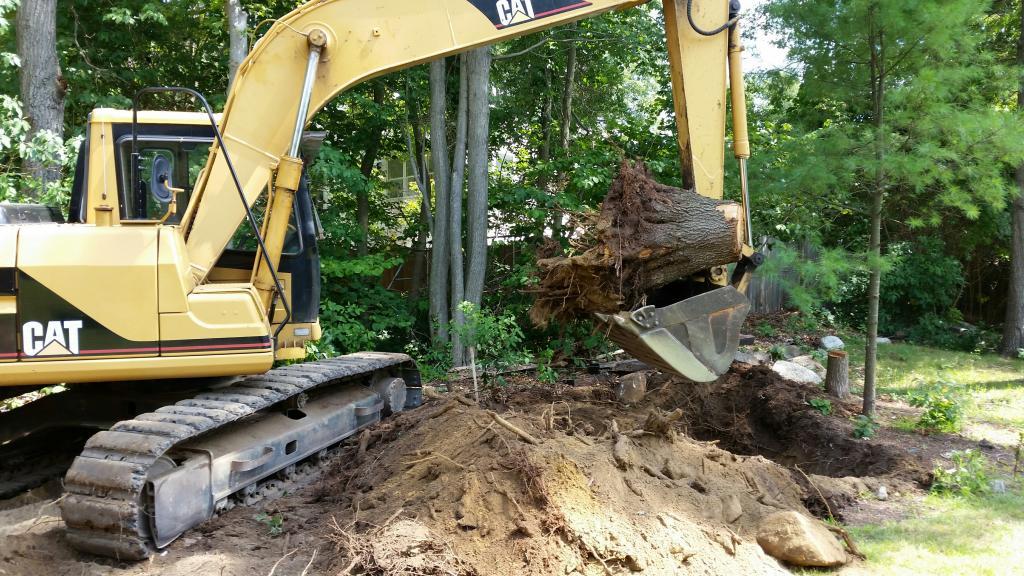 Phil's Excavating stump removal
